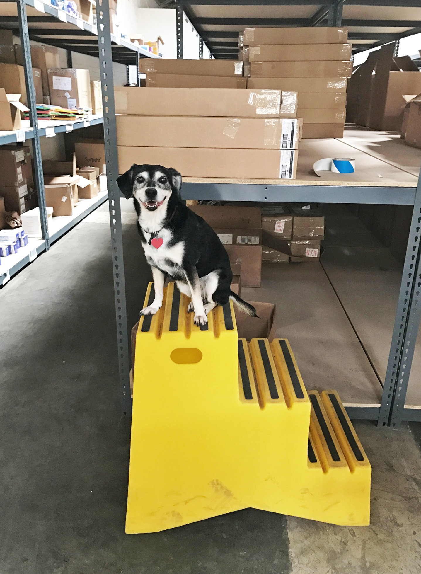 Charlie on a factory tour