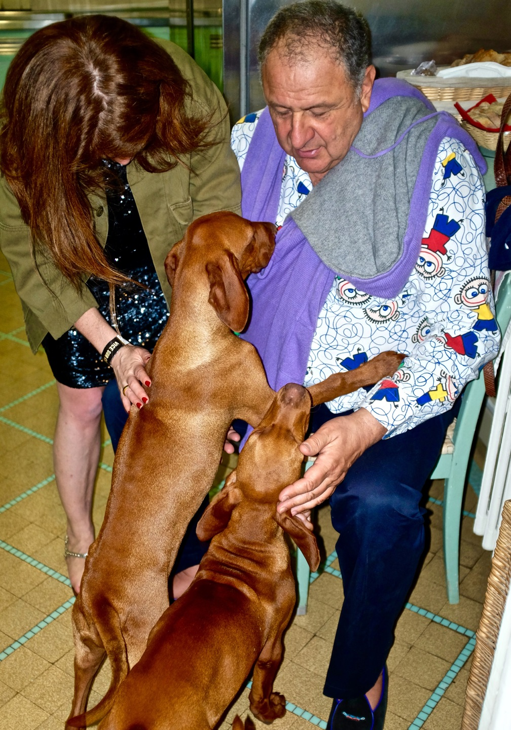 Jean Pigozzi with dogs in printed shirt